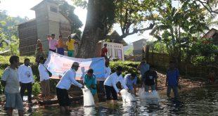 BKIPM Palu Restocking Ikan Sidat Di Danau Rano Kec.Balaesang Tanjung