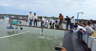 Gubernur Sulteng, Parimo Memiliki Potensi Besar Pengambangan Udang Vaname