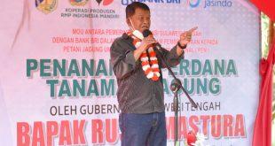 Kunjungi Morut Gubernur Sulteng Saksikan Penanaman Jagun Perdana